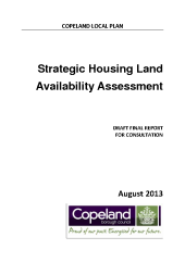 Preview of 130802_copelandshlaadraftfinal_web.pdf