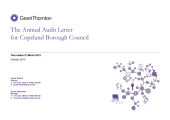 Preview of annual_audit_letter_201213.pdf