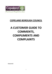 Thumbnail view of attachment customer_guide.pdf