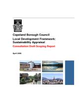 Preview of ldfsaconsultdraftscopingreportapr09.pdf