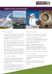 Preview of seagullinfo4.pdf