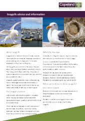 Preview of seagullinfo6.pdf
