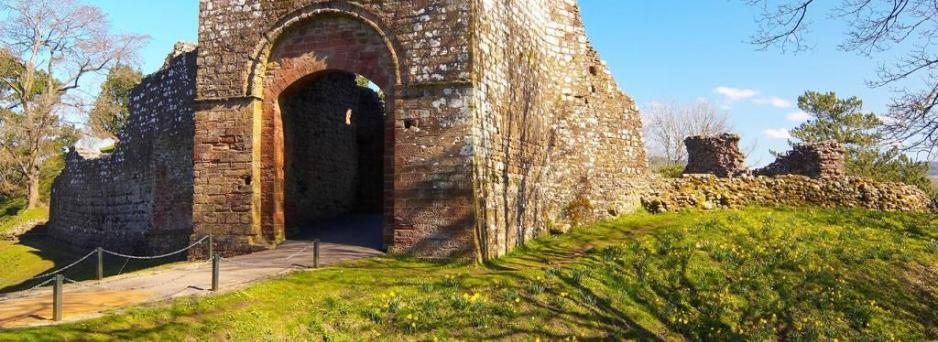 Egremont castle (c) Brian Sherwen